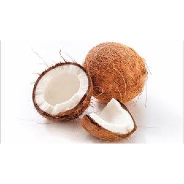 Whole brown coconut with its husk  for Puja /Pooja